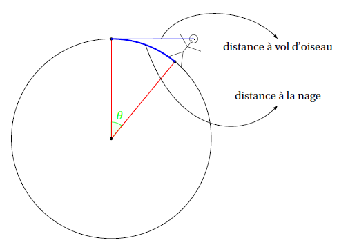 horizon_distance_vol_oiseau_distance_nage